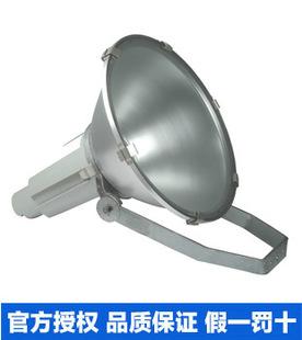 飞利浦投光灯HNF020 飞利浦250W 圆形聚光投光灯 卤钠灯HNF020